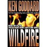 Wildfire (Special Agent Henry Lightstone Series Book 2)