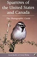 Sparrows of the United States and Canada: The Photographic Guide (Natural World)