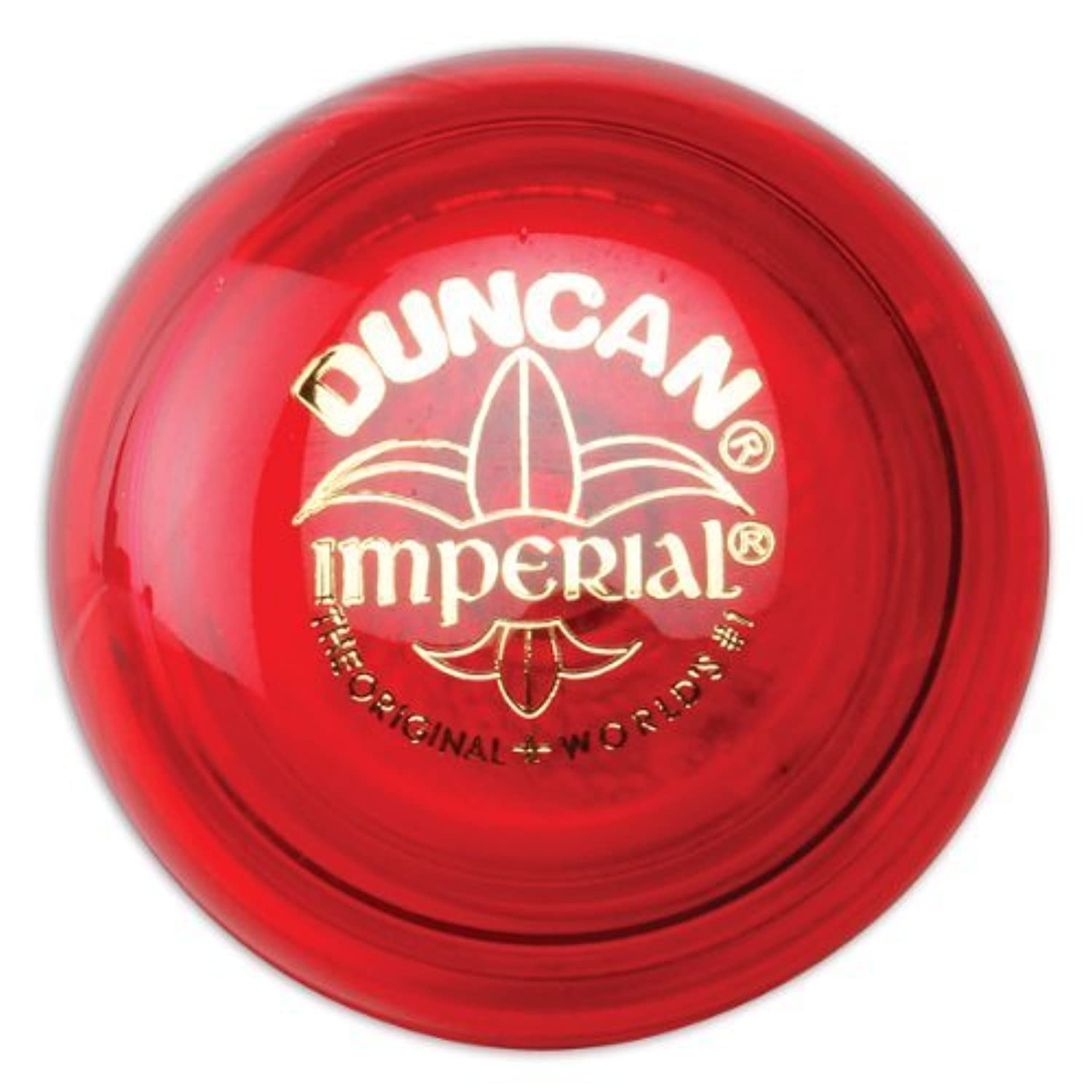 Duncan Raptor (Colors may vary)