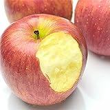 青森県産 りんご 小粒 りんご バラ詰め 大きさ無選別 5kg 訳あり
