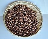 〈在庫限定〉【農家産直】29年5月初物 びわの種(半乾燥)1キログラム