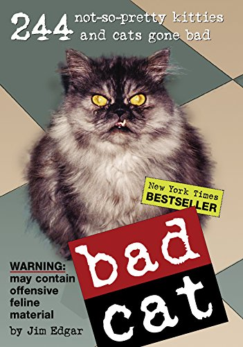 Bad Cat: 244 Not-So-Pretty Kitties And Cats Gone Badの詳細を見る