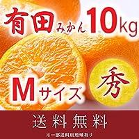 和歌山県産 高級 有田みかん AQ 秀等級 Mサイズ 10kg (送料無料)