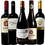 厳選チリワイン5本セット 全てリゼルヴァ 豪華木樽熟成 赤ワイン5本 ソムリエ厳選 750ml×5
