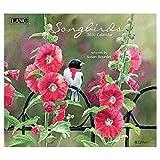[カレンダー 2020]LANG ラング社/SONGBIRDS Susan Bourdet カントリー 鳥 インテリア 令和2年 暦