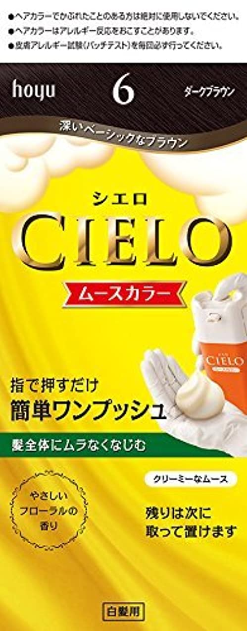 傾斜小石晩餐ホーユー シエロ ムースカラー 6 (ダークブラウン) ×6個