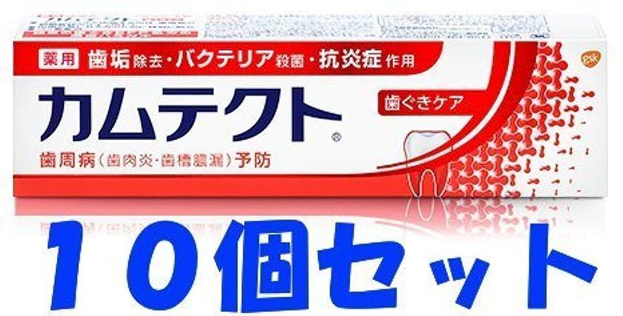 論文ビジネスストッキング【10個セット】カムテクト 歯ぐきケア 115g