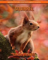 Squirrel: Amazing Pictures and Facts About Squirrel
