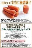無農薬にんじん 10kg 国産 ジュース用人参 有機栽培 画像