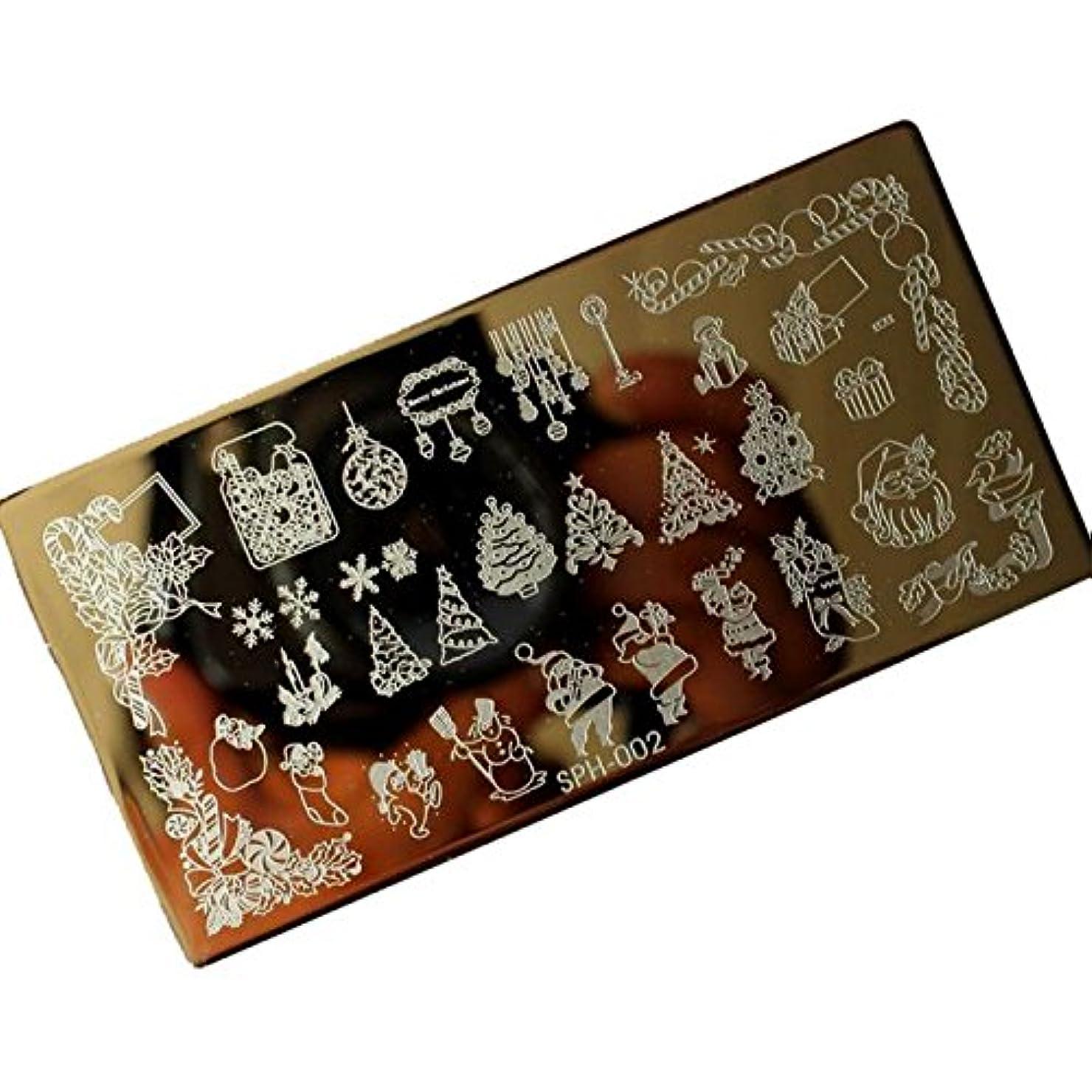 設置毛布緩める[ルテンズ] スタンピングプレートセット 花柄 クリスマス ネイルプレート ネイルアートツール ネイルプレート ネイルスタンパー ネイルスタンプ スタンプネイル ネイルデザイン用品