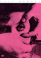 アンダルシアの犬/ブニュエルの秘かな愉しみ [DVD]