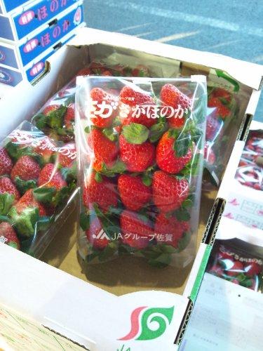 いちご「さがほのか」 佐賀県産 1ケース 4パック入