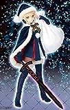 FateGo Fate/grand order FGO ボークス製 doll ドール DD ライダー/アルトリア・ペンドラゴン サンタオルタ 変身セット