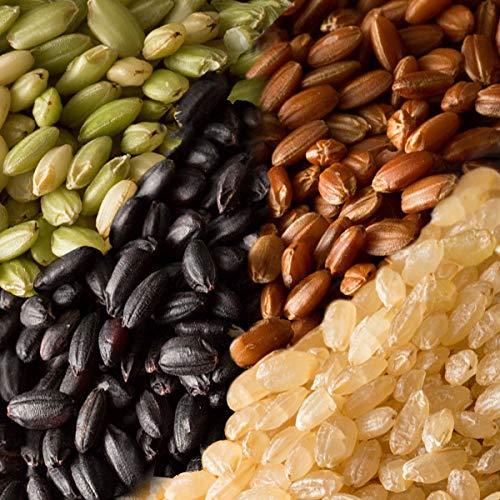 米 雑穀 雑穀米 国産 古代米4種ブレンド(赤米/黒米/緑米/発芽玄米) 10kg(500g x20袋) 送料無料※一部地域を除く 雑穀米本舗