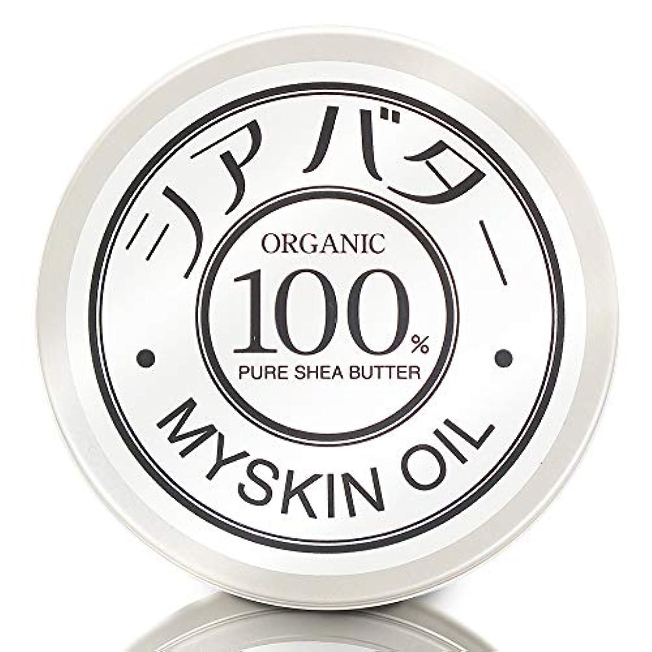 集中的なビクター受粉するシアバター 100g 【オーガニック?100%】