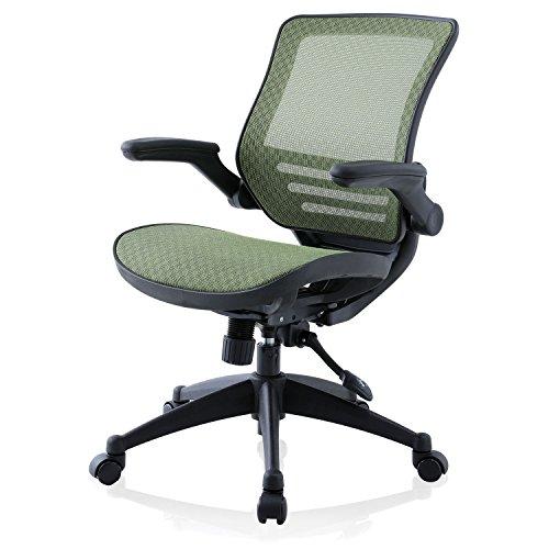 LOWYA (ロウヤ) オフィスチェア チェア リクライニング スプリングメッシュ 昇降 キャスター付き パソコンチェア ミドルバック おしゃれ 新生活 グリーン