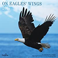 DaySpring On Eagles' Wing Wall Calendar [並行輸入品]