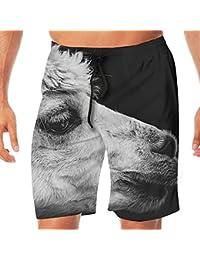 メンズ水着 ビーチショーツ ショートパンツ アルパカ スイムショーツ サーフトランクス 速乾 水陸両用 調節可能