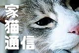 家猫通信09