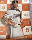 北海道日本ハムファイターズ 2016 FC限定ポスター #2杉谷拳士