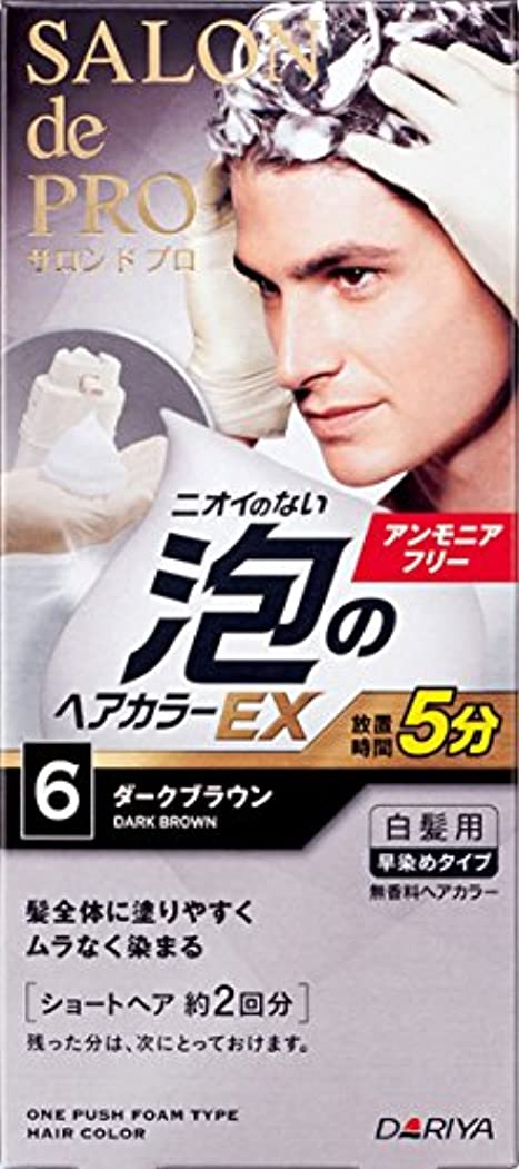 サロン ド プロ 泡のヘアカラーEX メンズスピーディ (白髪用) 6 <ダークブラウン> 1剤:40g+2剤:40g [医薬部外品]