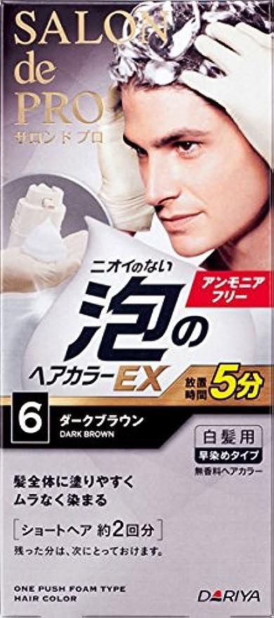 たとえビート相談するサロン ド プロ 泡のヘアカラーEX メンズスピーディ (白髪用) 6 <ダークブラウン> 1剤:40g+2剤:40g [医薬部外品]