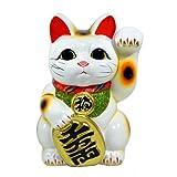 招き猫 7号 白小判猫(左手) 常滑焼