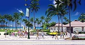 ハワイアン雑貨 インテリア/キャンバス パネル絵(Hawaii Of Hawaii)【ハワイ雑貨】【お土産】