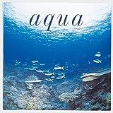 Aqua~アクア