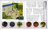 庭で楽しむ野鳥の本―原寸大 画像