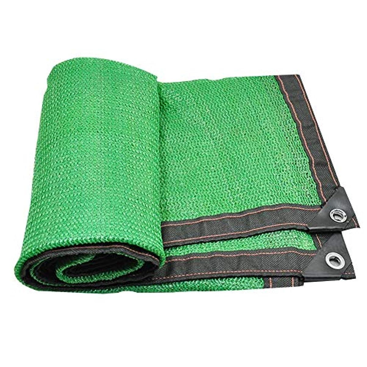望む言い直す賞賛するSHIJINHAO オーニングシェード遮光ネット スイミングプール 日焼け止め 影 カバー 酸化防止剤 エッジ保護 メタルホール ポリエステル、20サイズ、2色 (Color : Green, Size : 4x9m)