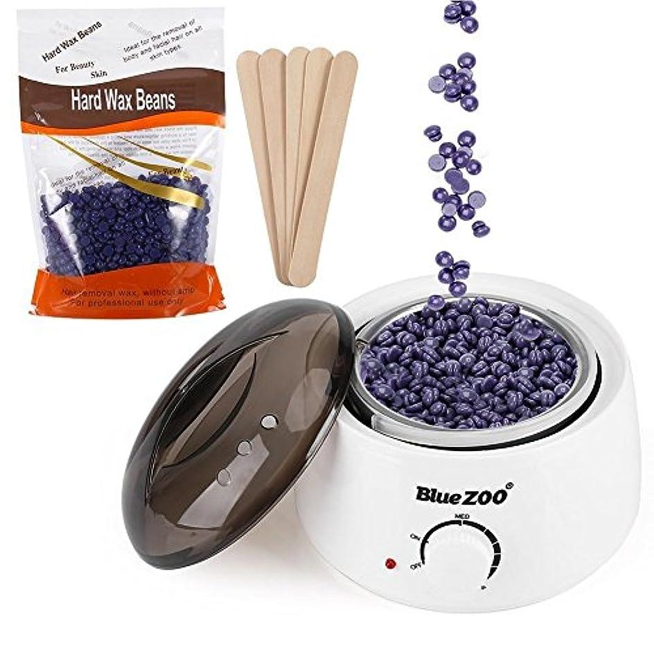 アスペクト全部香水500ml調節可能な温度ワックスヒーター付きハードワックス豆脱毛ツールキット使用顔面脇の下手足ビキニライン脱毛(US-PLUG)