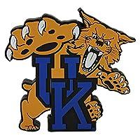 NCAA Kentucky 'UK Logo Shape' USB Drive [並行輸入品]