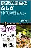 身近な昆虫のふしぎ (サイエンス・アイ新書) 画像
