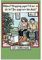 猫クリスマスChristmas Funny Paperカード 12 Christmas Card Pack (SKU:B1888)