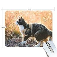 Anmumi マウスパッド 滑り止め 動物柄 猫柄 萌え 19×25cm ゲームに適用 かわいい オシャレ レディース メンズ 子供 ゴム 実用性 パソコン対応