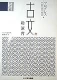 古文総演習 完成編 プログレス読解・構図・鑑賞