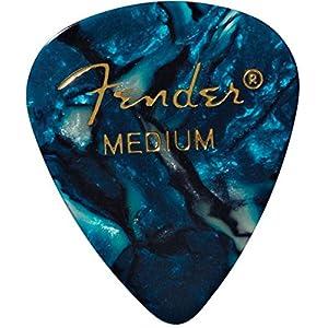 Fender フェンダー ピック OCEAN ...の関連商品9