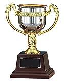 優勝カップ トロフィー 【レーザー彫刻 名入れサービス対応】 [ 化粧箱付 ゴールド シルバー 防錆 全5サイズ ] 【高さ210mm】エイブルウィン FS-125B