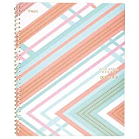 Five Star Student 2018-2019 Academic Year Weekly & Monthly Planner Large 8-1/2 x 11 Style Interrupt Coral (CAW509D2) [並行輸入品]