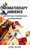 Aroma Therapy Ambience (English Edition)