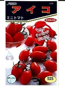 アイコ サカタのミニトマト種です
