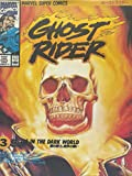 Ghost rider 3 暗黒街の処刑人 (マーヴルスーパーコミックス)