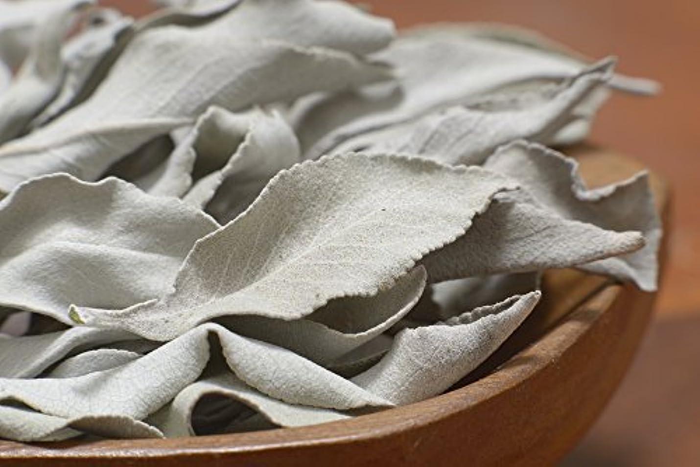 エンジンナインへメイト最高級カリフォルニア産オーガニック ホワイトセージ 50g入り (葉+茎タイプ) 無農薬栽培 浄化用 スマッジング用として