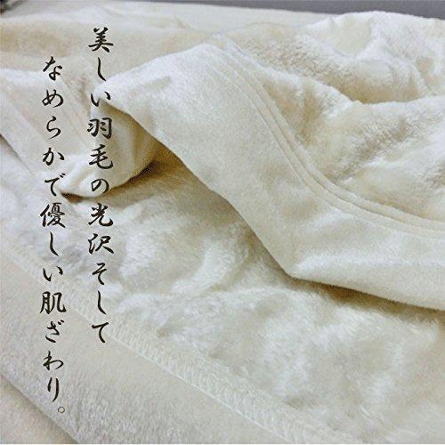 シルク毛布【京都西川】シルク100%(毛羽部分)シングルサイズ...