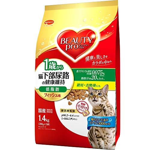 【高齢猫用】ドライフードおすすめ人気ランキング15選