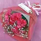 491【お祝い 母の日 誕生日】カーネーションの花束・感謝の心を花束にして・濃ピンク15本
