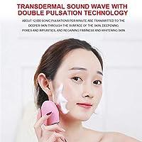 電気美顔器 洗顔器 超音波振動 ワイヤレス誘導 フェイスケア クレンジング 保湿 マッサージ 防水 黒ずみクリア マイクロカレント ギフト