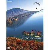 空撮 紅葉 ~天空の旅人 錦秋の大地を飛ぶ~ [DVD]