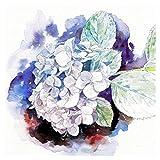 紫陽花 / 眩暈SIREN